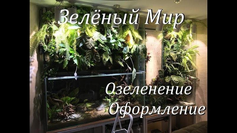 Аквариумпермь рф №4 Зелёный мир Аквариум фитостены Ваби Куса Оформление Озеленение