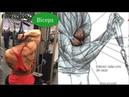 5 Ejericicos para Desarrollar la Espalda y 5 Ejercicios para Biceps Grandes, Rutina