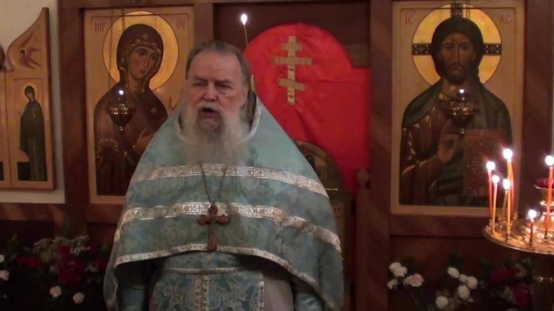 Священник Павел Адельгейм Проповедь на Лиургии в Фомино воскресенье в храме свв Жён мироносиц Псков 12 5 2013