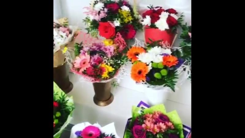 Flower_kgd_39
