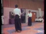Тамура сэнсэй и Тики Шиван - айкикен