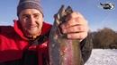 Vip Рыбалка на латных прудах Платные пруды Лучший платник