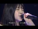 Ikimonogakari - SAKURA (59th Kouhaku Uta Gassen 2008.12.31)