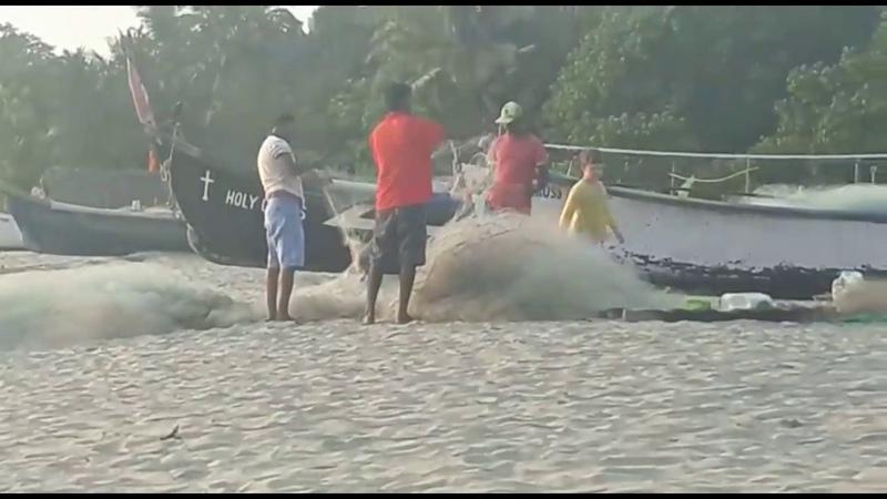Влог: Пляж Морджим, Северный Гоа, Индия / Vlog: Morjim Beach, North Goa, India