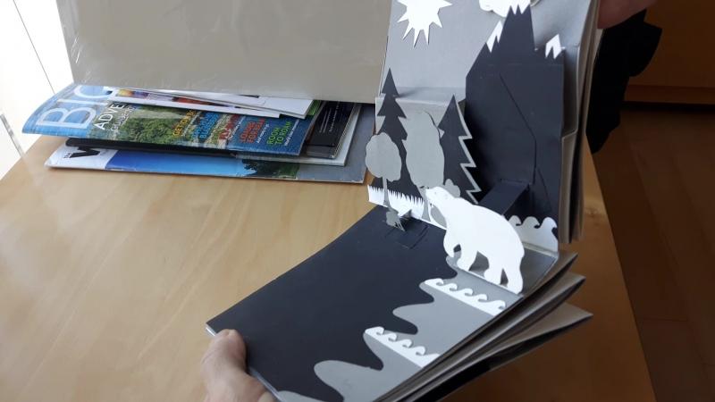 3D Pop up book Polar Bear Who Didn't Like Snow