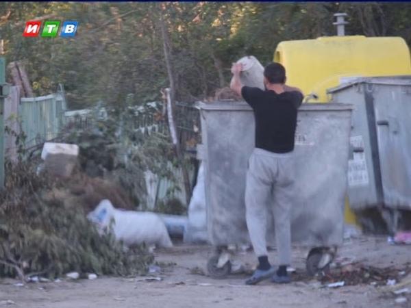 Штрафы за незаконный вывоз мусора