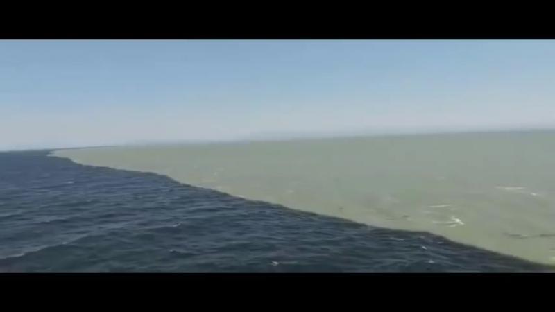 Слияние Тихого океана и Аляскинского залива_HIGH.mp4