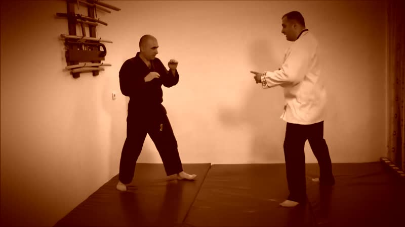 Rebel Hapkido Series 합기도 By Vidadi Hajiyev (57)
