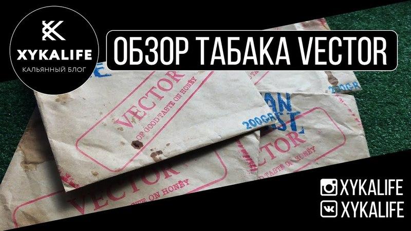 Обзор табака VECTOR/БОНУС с дегустации/Nuahule Smoke Екатеринбург