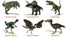 Мир Динозавров Доисторический мир Развивающие карточки для детей