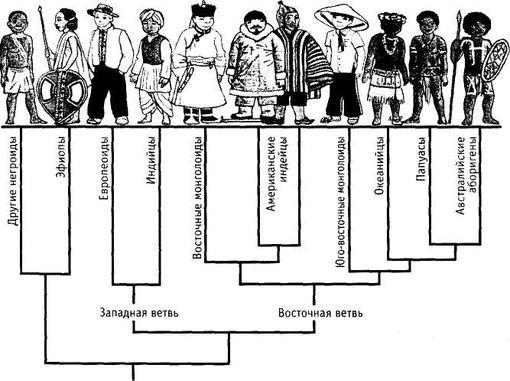 Негроидные аборигены америки