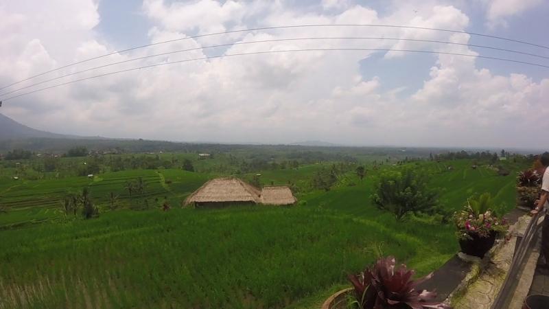 рисовые террасы Джати лювих. Бали 2018