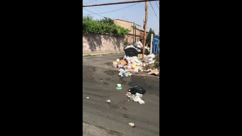 15 07 2018 Էրեբունի Վարչական Շրջան Նոր Արեշ 9 րդ 11 րդ փողոցներում տիրում է գարշելի վիճակ աղբը հասել է երկինք։ Sanitek Armeni