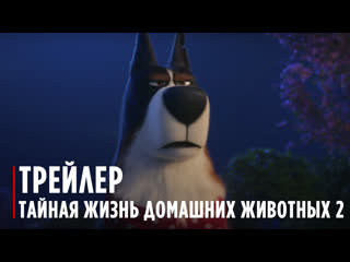 The Secret Life Of Pets 2 | The Rooster Trailer