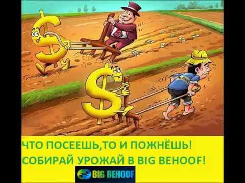 Обратите внимание на проект Big Behoof