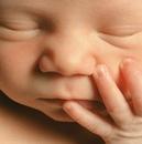 Младенца запах – это чудо,