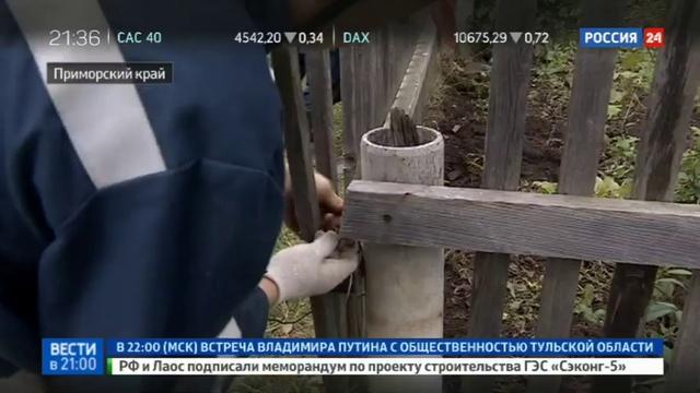 Новости на Россия 24 • Поселки Приморья превратились в зону бедствия