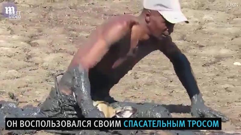 Evrika channel Спасение Импалы застрявшей в грязи Salvation of the Impala stuck in the mud