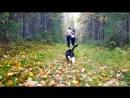 2018 09 23 Прогулка с Бориской по лесным дорожкам