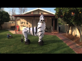 Dope Zebra - Rhett  Link
