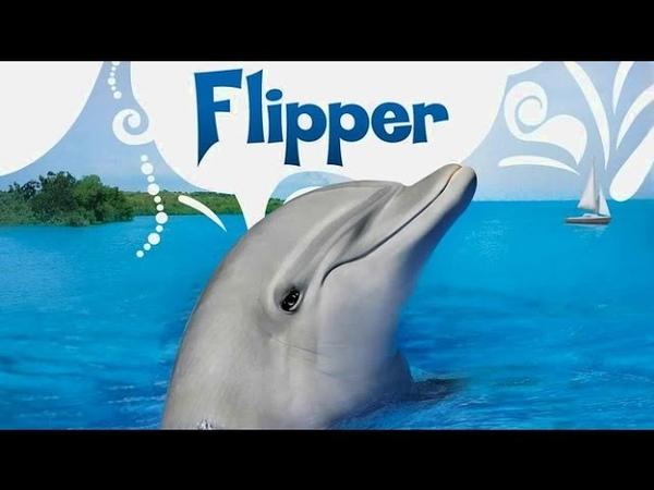 Flipper O Golfinho - Chame o golfinho