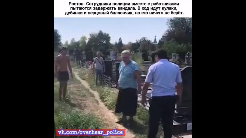 Ростов. Сотрудники полиции вместе с работниками пытаются задержать вандала. В ход идут кулаки, дубинки и перцовый баллончик, но