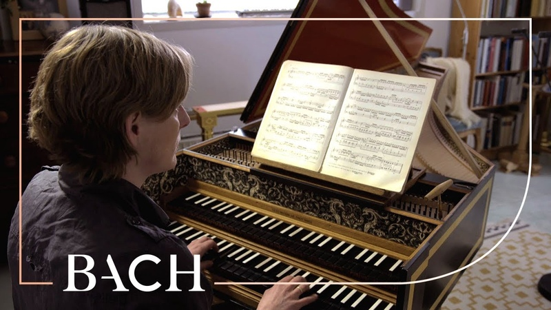 Bach - WTC I Prelude and fugue in D minor BWV 851 - Steenbrink | Netherlands Bach Society