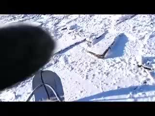 В Хабаровске уверены, что здесь упал метеорит.