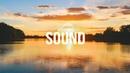 S. lyre - quiet