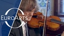 Bach Ricercar à 6 BWV 1079 Sigiswald Kuijken Barthold Kuijken