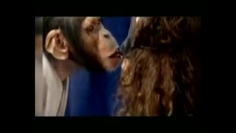 Поцелуи с обезьяной прикол