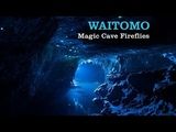 WAITOMO - magic cave fireflies.
