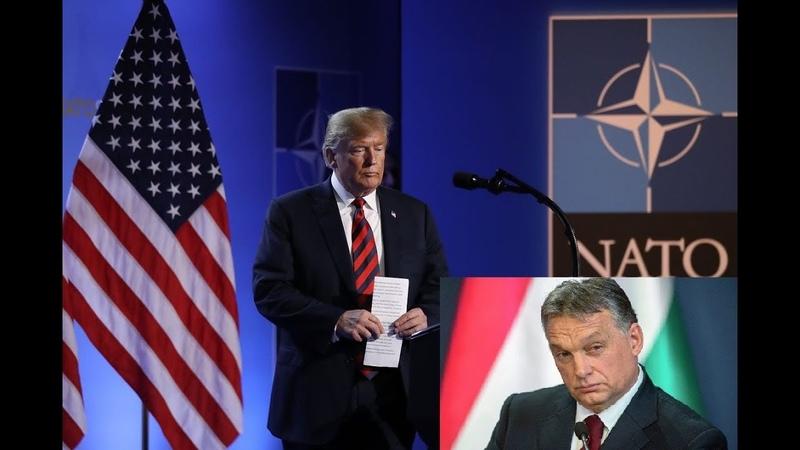 Proche de M Poutine le Premier ministre hongrois exprime ses doutes au sujet de l'Otan
