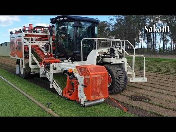 Modern Automatic Roll Harvester And Sandfiller - Turf Harvesting Machine In The World HD720p