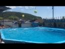 Дельфинарий 2 г. Архипо - Осиповка