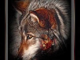 Oliver Shanti ~ Wolf Song