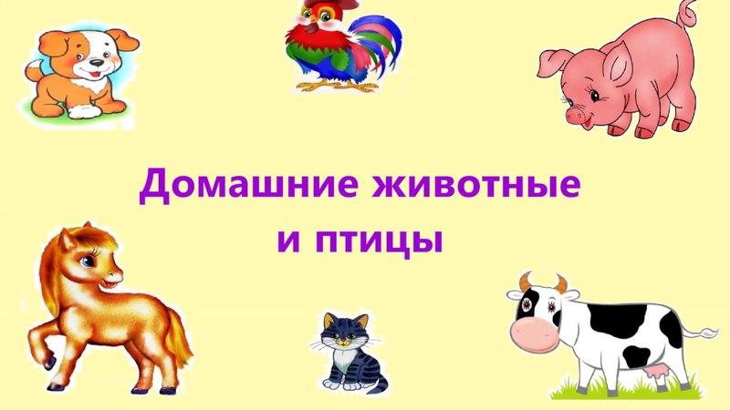 ДОМАШНИЕ ЖИВОТНЫЕ ДЛЯ ДЕТЕЙ | Мультики для малышей | Развиваем малышей | russian cartoons