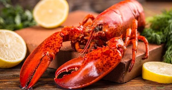Разница между омаром и лобстером Придя в дорогой и популярный ресторан, очень не хочется упасть лицом в грязь и показать своё невежество, особенно, если дело касается изысканных и экзотических