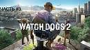 Прохождения Watch Dogs 2 - Частъ 3 Кибердрайвер