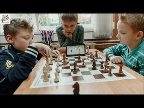 Основы методики решения шахматных задач
