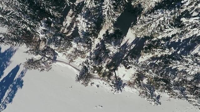 Austrian Winter (Seefeld, Tyrol Austria)