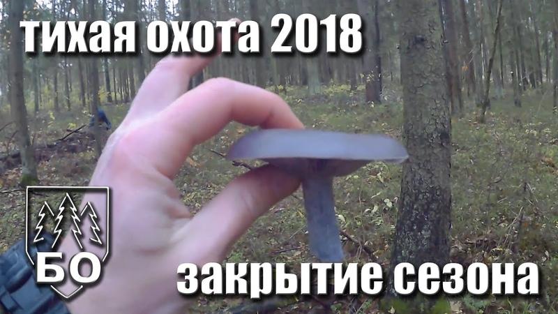 Тихая охота 2018. Закрытие.