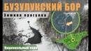 Прогулка по зимнему Бузулукскому бору [Buzulukskiy Bor]