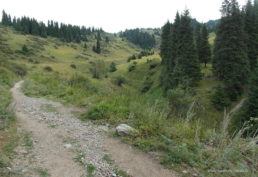 Пастбище в ущелье Кимасар 2018 пешком