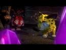 Лео и Тиг - Таинственная пещера - 2 серия - Подпишитесь на нас -svk/hdtlum