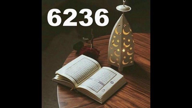 Сколько в Къур`ане Аятов не 6666 Коба Батуми