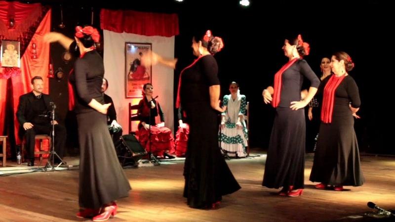 Habanera Flamenca - 1º Festival Flamenco de Montes Claros 2016