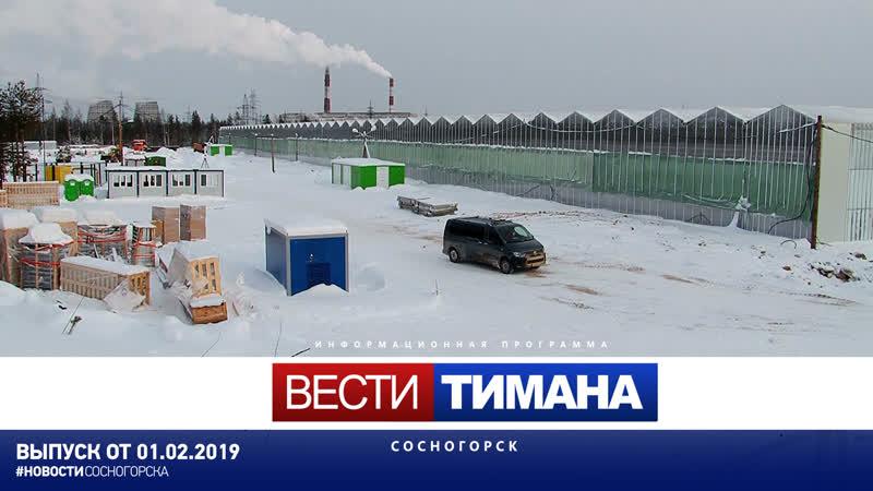 ✳ Вести Тимана. Сосногорск | 01.02.2019