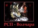 РСП Волчара
