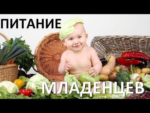 Питание младенцев Адекватное питание 2018 Лекция 10 последняя Замалеева Г А